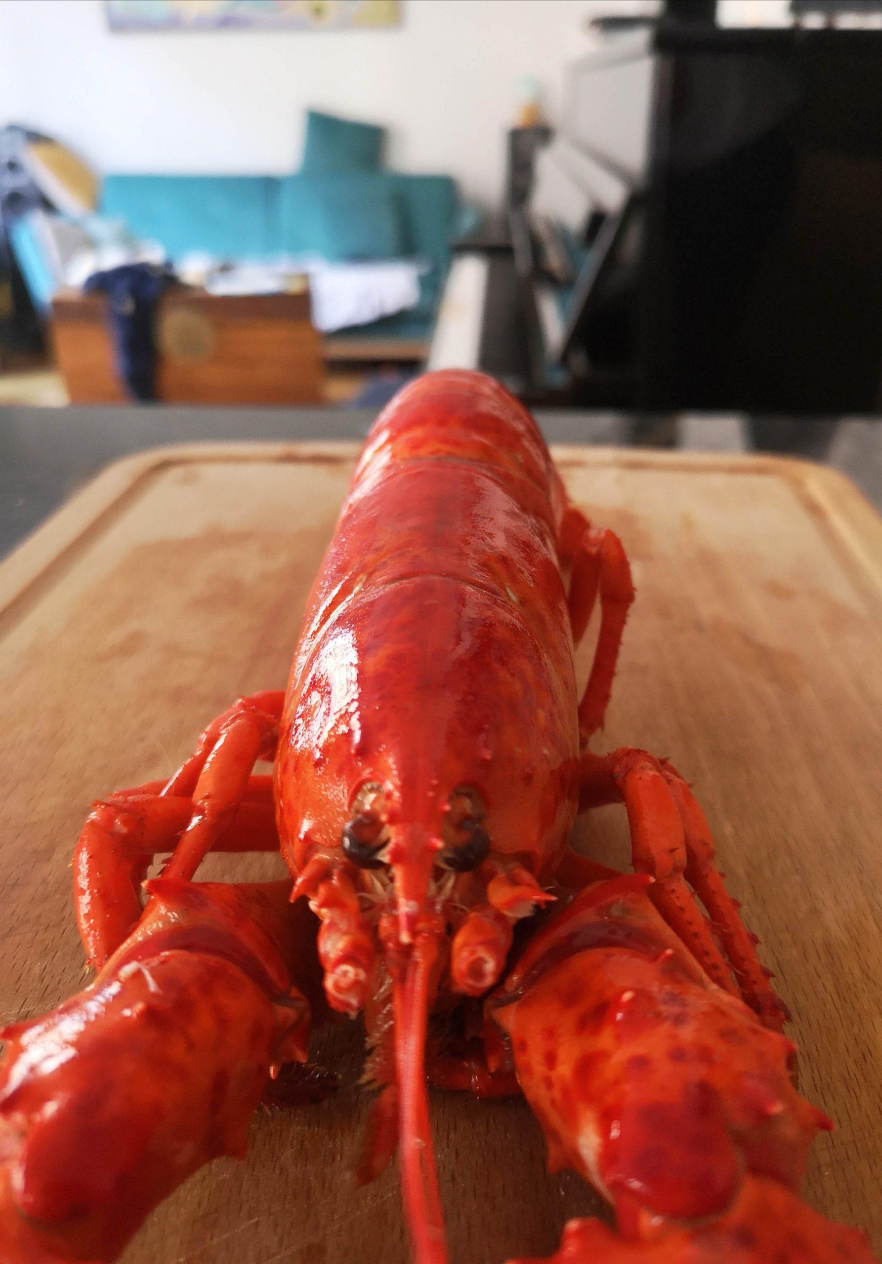 cuisson du homard recette